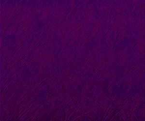 Violet Simple Background Texture
