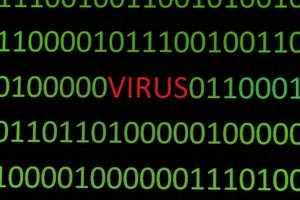 Virus On Binary Data