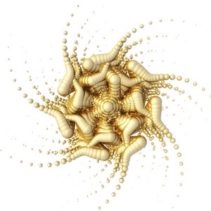 Visualization Of A Fractal Structure