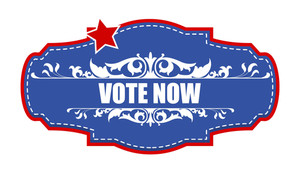 Vote Now Decorative Banner Vector