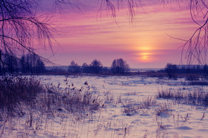 Beautiful winter pink sunset over snowy field
