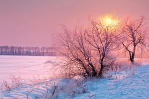 Nascer do sol bonito do inverno