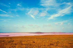 Pink lake in desert