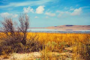 Beautiful lake in desert