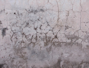 Wall Texture 52