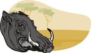Warthog Head