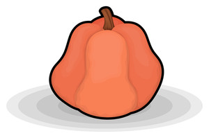 Waste Pumpkin Vector