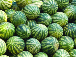 Water Melons Background Texture