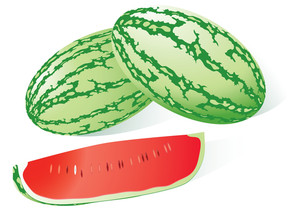 Watermelon On. Vector Illustration