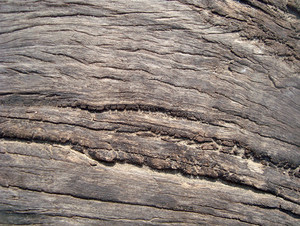 Weathered_wooden