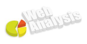 Web Analysis Pie Chart