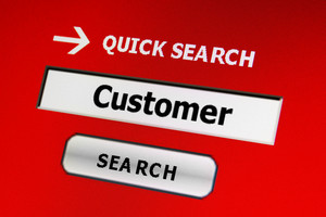 Web Customer Search