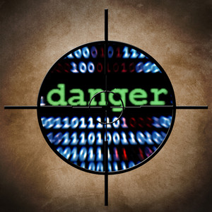 Web Danger Target