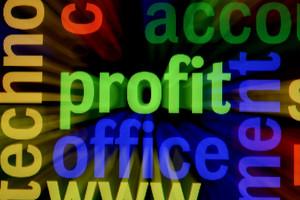 Web Profit Concept