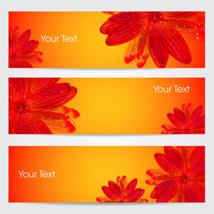 Website Banner Or Header Set With  Floral.