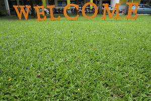 Welcome text on green grass