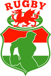 Welsh Rugby Player Wales Dragon Shield