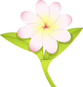 White Blossom Vector