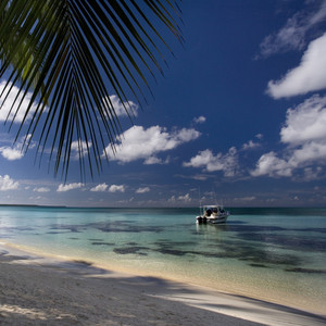 White boat moored along a tropical beach