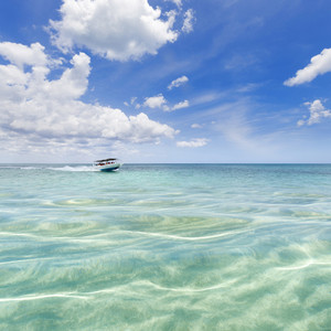 White boat traveling through clear, tropical waters