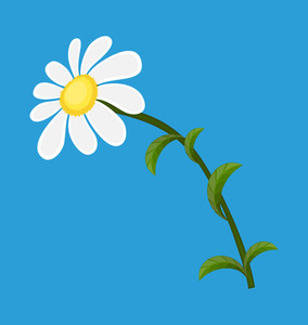 White Daisy Vector Element