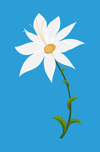 White Flower Drawing Art