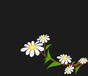 White Flowers Branch Background