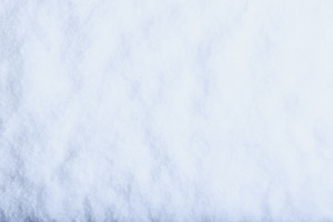 White frost snow background. Winter and Christmas concept.