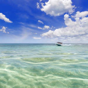 White motorboat in clear, tropical waters