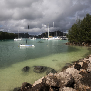White sailboats in a tropical harbor under a stormy sky
