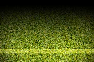 White strips on soccer field