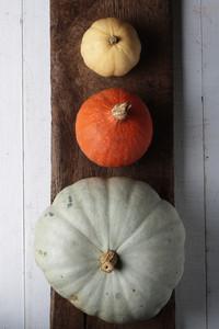 Whole Pumpkin Selection