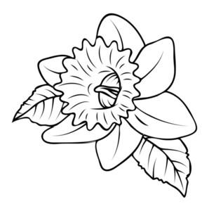 Wild Flower Shape Design