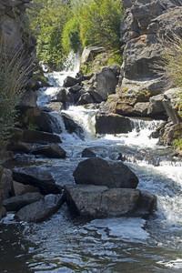 Wild River 340