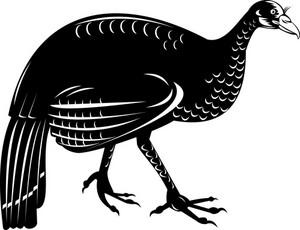 Wild Turkey Retro Style
