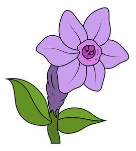 Wild Vintage Flower