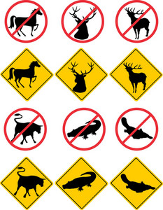 Wildlife Symbols Signs