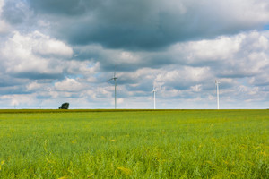 Windmills on corn field under cloudy sky. Beautiful summer landscape photographed in Poland