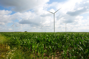 Windmills standing on corn field. Beautiful rural landscape with windmills.