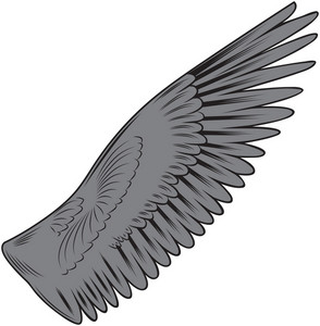 Wing Vector Elements