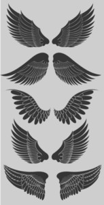 Wings Set Vectors