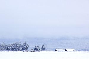 Winter Ladscape Background