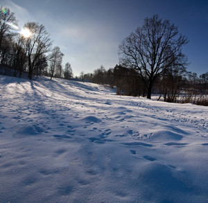 Winter landscape with snow and trees. Polish landscape