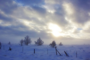 Winter Scene Evening Background