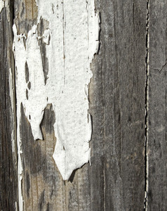 Wood Background 11