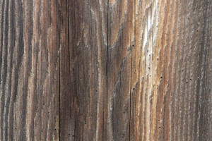 Wood Background 15
