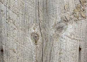 Wood Background 17