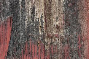 Wood Background 23