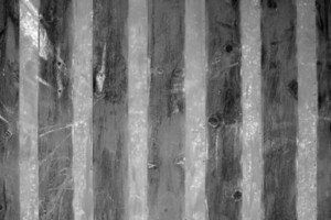 Wood Background 27