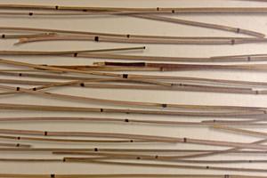 Wood Background 42